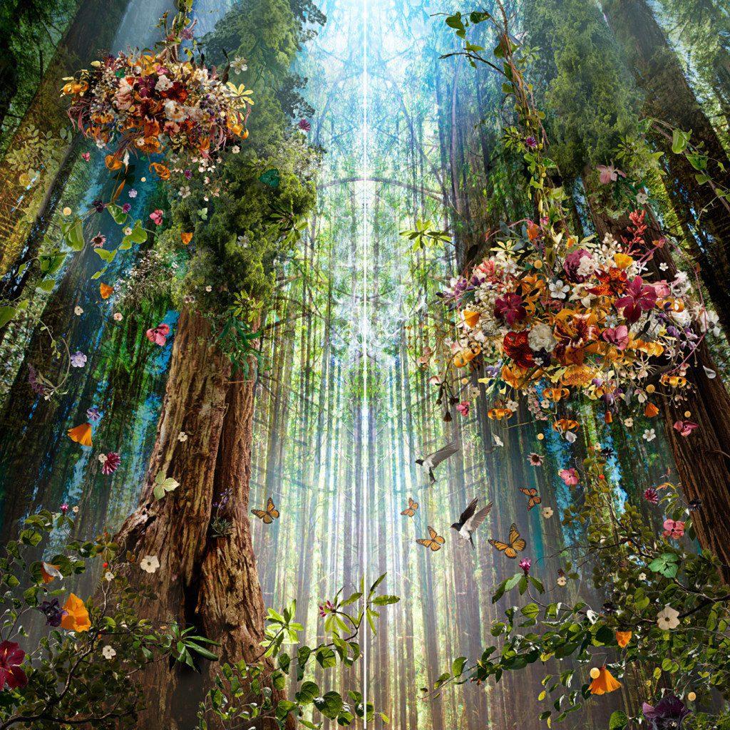 Ysabel Lemay Wonderful Other Worlds Artpeople Net
