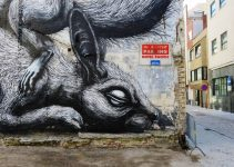 ROA |Muralist Street artist