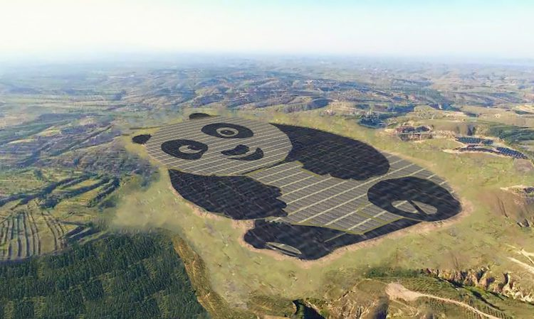 Solar farm in China is shaped like a panda
